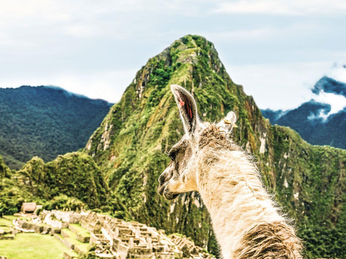 Join us on a Virtual Contiki Tour to Peru