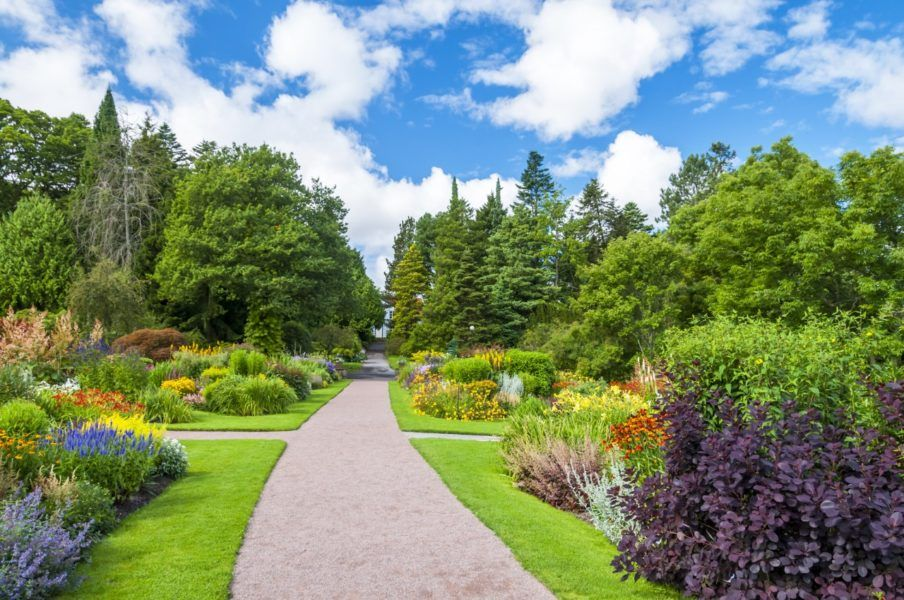 Top 10 botanical gardens in the US